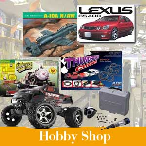 Hobby and Collectables Shop